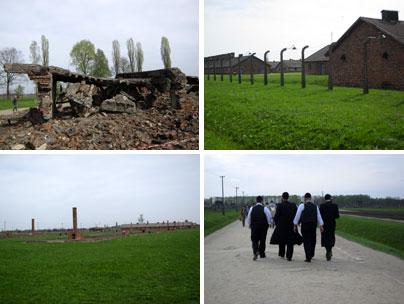Auschwitz Birkenau: il campo