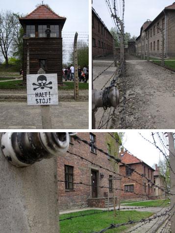 Auschwitz: filo spinato