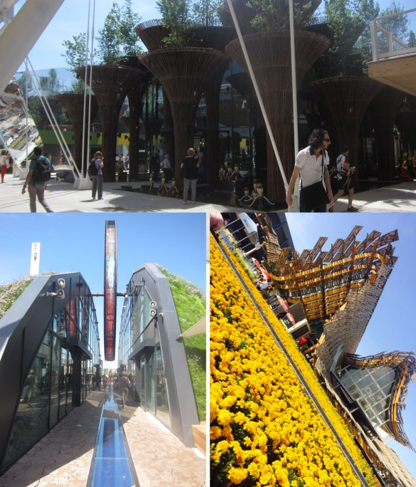 Padiglioni Lato Ovest - Expo 2015