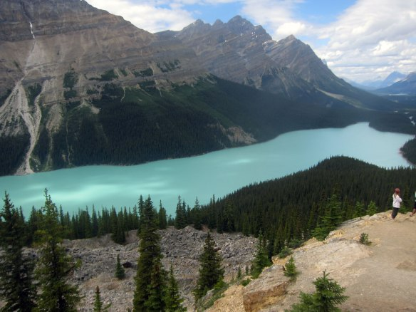 Icefields Parkway - Peyto Lake