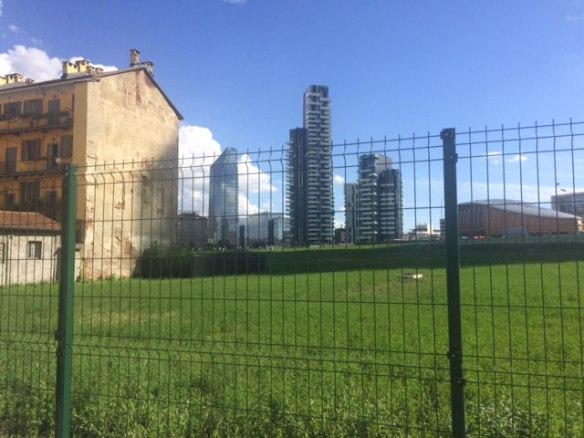 Milano - Campo di grano