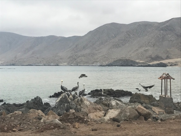 Parque Nacional Pan de Azucar