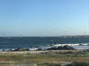Punta Chorros