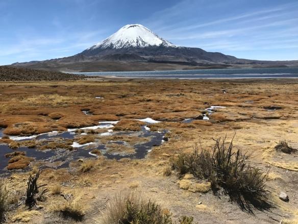 Lago Jungarà - Parque Nacional Lauca