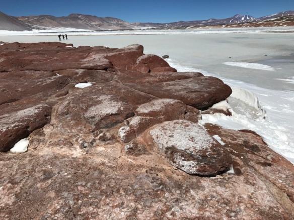 Salar del Talar - San Pedro de Atacama
