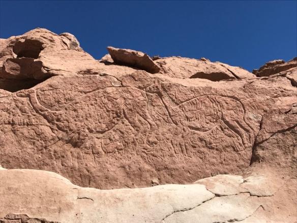 Hierbas Buenas - I Geroglifici di San Pedro de Atacama
