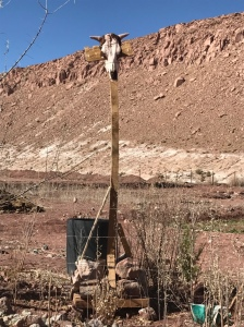 Verso Arcoiris - Atacama