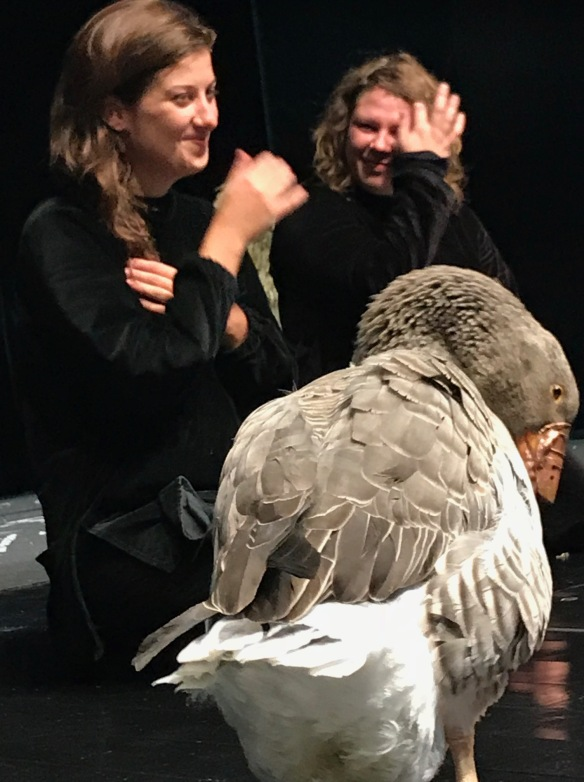 Becco di Rame - Teatro del Buratto, Milano